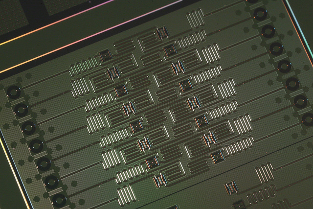 IBM-Q: testing a 50 qubit processor